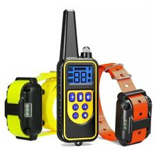875 Yards Remote Electric Dog Shock Training E Collar Waterproof IP67 for 2 Dogs