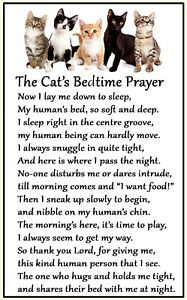 Cat Lovers Gift (Bedtime Prayer) Large Fun flexible Magnet 6 x 4 inches