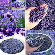 100g Organic Natural Dried Lavender Buds Flowers Grain Petals Fragrance Aromatic