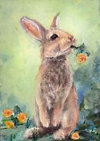 """print ACEO sweet bunny rabbit """"Dandelion"""" wildlife flowers weeds garden animals"""