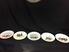 5 - Antique Limoges Cabinet Plates Hand Painted Birds Signed 1888 H & Co