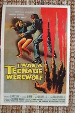 I was a Teenage Werewolf Lobby Card Movie Poster Michael Landon Tony Marshall