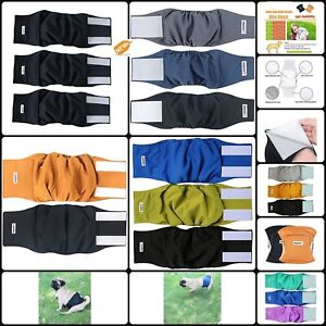 Dog Diapers Set Pet Male Puppy Belly Wrap Elastic Band Washable Waterproof Outer