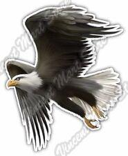 "Bald Eagle Hawk White Head Bird Car Bumper Window Vinyl Sticker Decal 4""X5"""