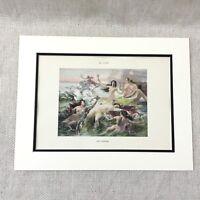 1898 Antico Stampa Femmina Nude Ragazze The Sirene French Pittura Adolphe Lalyre