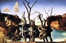 Stampa incorniciata-Salvador Dali Cigni che riflettono elefanti (replica FOTO POSTER)