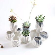 5pc Geometric Succulent Planters in White & Blue Small Ceramic Plant Pots