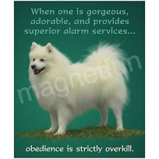 American Eskimo Dog Obedience is Overkill Fun Picture Magnet for Eskie Lovers