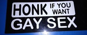 3 x HONK IF YOU WANT GAY SEX CAR GRAPHIC STICKER WHITE 8cm x 18cm PRANK JOKE