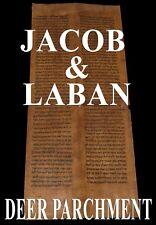 TORAH SCROLL BIBLE MANUSCRIPT VELLUM FRAGMENT 200 YRS YEMEN Genesis 31:2-32:2