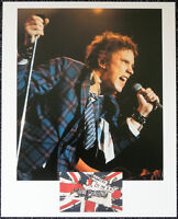 JOHNNY ROTTEN POSTER PAGE . JOHN LYDON SEX PISTOLS ANARCHY IN THE UK . Q16