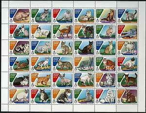 SOLOMON ISLANDS 2016 CATS  SHEET OF 36 MINT NH