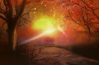 """perfect 36x24 oil painting handpainted on canvas""""Sunset In The Forest"""" NO4366"""