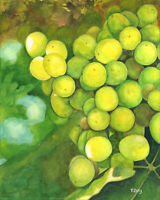 Green grapes, Original artwork gouache/watercolor painting, fruits 8×10""