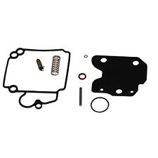 Carburetor Kit  Mercury 25-40hp 4 Stroke  854256
