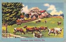 Delta Pennsylvania Cow Pasture Greeting Antique Postcard K58018
