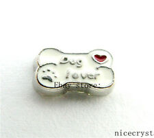 10pcs Dog lover bone Floating charms For Glass Memory Locket Free shipping FC930