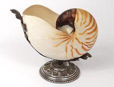 Nautile décoratif coquillage monture métal argenté XXème siècle