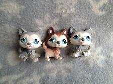 Littlest Pet Shop #68 69 70 set of three grey gray brown white huskies blue eyes