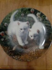Edwin M Knowles A Chance Meeting White American Shorthairs Decorative Plate
