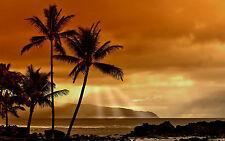 Framed Print - Foggy Misty Tropical Island (Picture Poster Ocean Beach Sea Art)