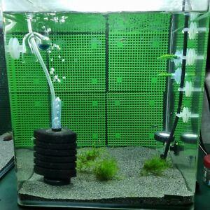 Moosgitter Rückwand (Aquarium Aquascaping Moos Pflanzen Garnelen)