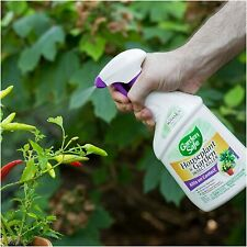 Houseplant & Garden Insect Killer, Ready-to-Use, 24-Ounce, 4-Pack