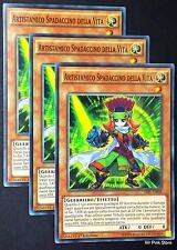 Set 3X ARTISTAMICO SPADACCINO DELLA VITA Performapal Swordman TDIL-IT008 YUGIOH