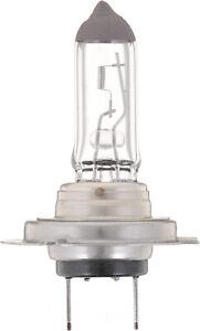Headlight  Philips  H7B1