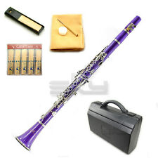 UPGRADED! New Band Approved Sky Purple Clarinet w Mouthpiece Reeds Cloth More