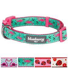 Blueberry Pet Pink Flamingo on Light Emerald Basic Dog Collar Neck 37cm-50cm ...