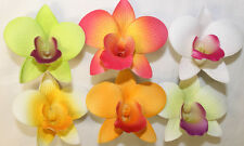 Set of 6 ~ Hawaiian Tropical Wedding Bridal Party Orchid Foam Flower Hair Clips