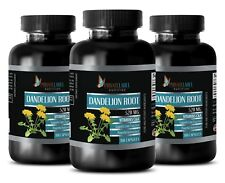 Antioxidant liquid supplement - 520MG DANDELION ROOT - Dandelion organic -3B