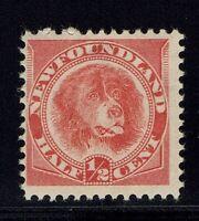 Newfoundland SG# 62, Mint Hinged, Hinge Remnant  -  Lot 031416