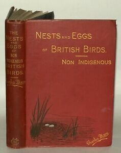 The Nests And Eggs Of Non Indigenous British Birds -Charles Dixon. 1894 Hardback