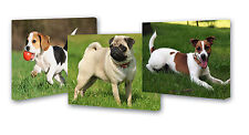 "SET OF 3 CANVAS FRAMES 9""X12"" YOUR PERSONALISED PHOTO PICTURES FAMILY GIFT  DOG"