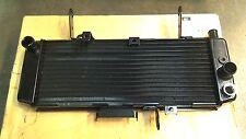 New OEM Radiator for Suzuki SV650S (03-07) 17710-17G30