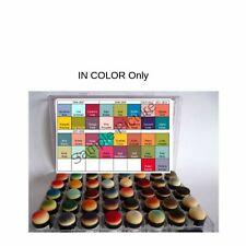 Stampin Up Paper Cardstock Organizer Tool Sponge Dauber Storage Case Chart Color