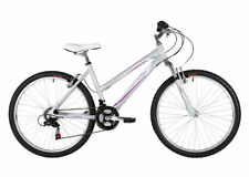 Biciclette Mountain bike in argento