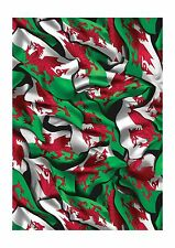 Welsh Flag Hydrographics Film 5 meter Roll - 100cm wide Film