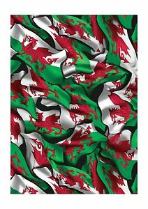 Welsh Flag Hydrographics Film 5 meter continuous Roll -100cm wide
