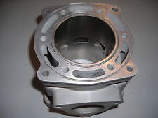 Polaris RMK 700cc Re-plated Cylinder  Casting # 5131220;  $75 Core Deposit!
