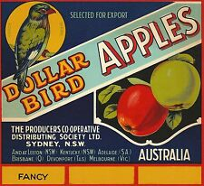 "RARE OLD ORIGINAL 1920'S LITHO ""DOLLAR BIRD BRAND"" LABEL ART SYDNEY AUSTRALIA"