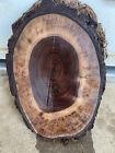 Oval Beautiful Black walnut  slab