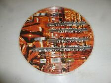 "The STUNNED Guys & Dj Paul-thrillseeka-ITALY 4-TRACK 12"" Picture Disc Single"
