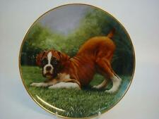 DANBURY MINT THE BOXER DOG BOTTOMS UP!  PLATE