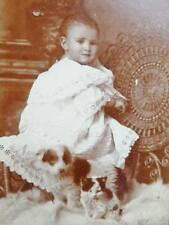 Antique Cabinet Card old Photo c1890s Child Eyelet Gown Puppy Dog & Kitten Cat
