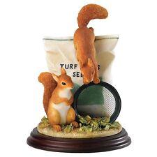More details for border fine arts studio - mammals - squirrels in the garden a26260