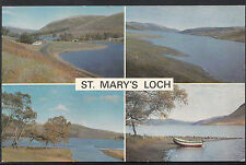 Scotland Postcard - Views of St Mary's Loch, Selkirkshire    A6421