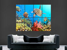 UNDERWATER TURTLE FISH REEF  SEA  LARGE WALL ART POSTER PICTURE  PRINT